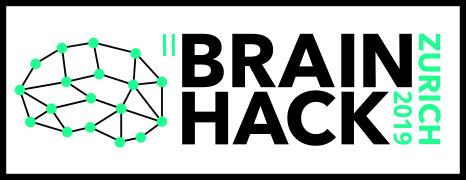 2nd Brainhack Zurich, 2019