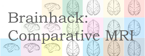 Brainhack: Comparative MRI
