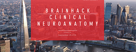 Brainhack London - Clinical Neuroanatomy 2017