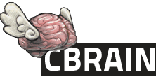 Niak in CBRAIN